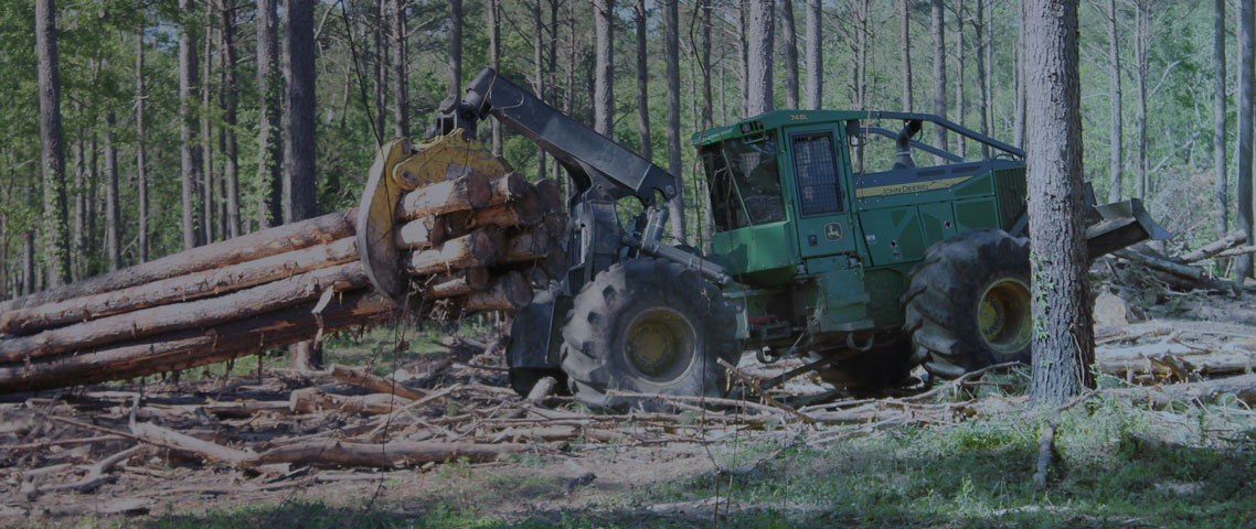 Precision Forestry and Site Preparation